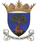 Royal Burgh of Falkland and Newton of Falkland Community Council Logo